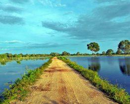 Séjour Pantanal et randonnée